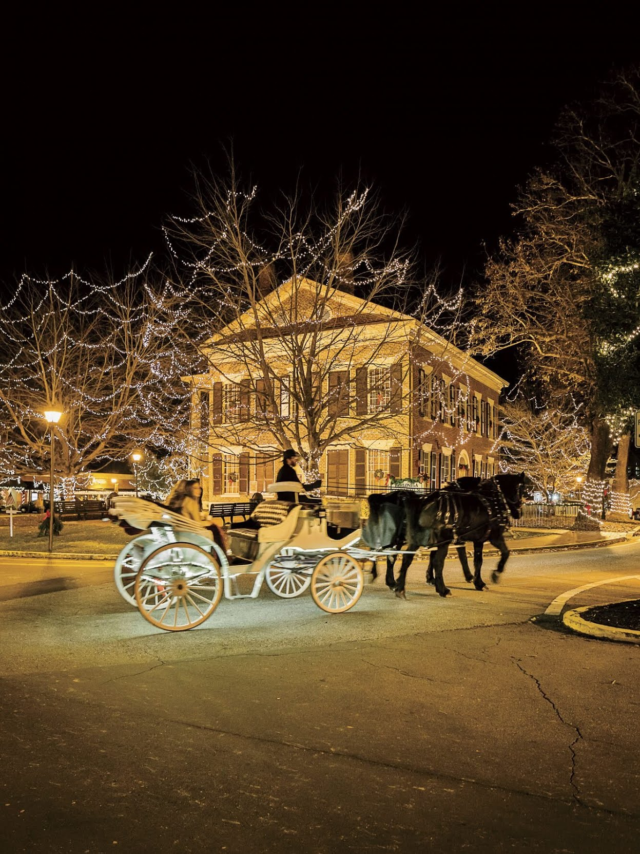 Carriage Ride in Dahlonega, GA