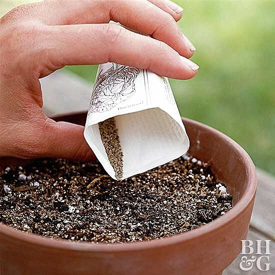 sprinkling seeds in planting pot